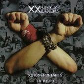 XX Anos XX Bandas: Xutos & Pontapés Tributo by German Garcia