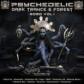 Psychedelic Dark Trance & Forest 2020 Top 10 Hits Ohm Ganesh Pro, Vol. 1 by Ohm Ganesh Pro