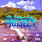 The Jakson Bay Project by Various Artists