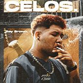 Celos by Ray Brown Ve
