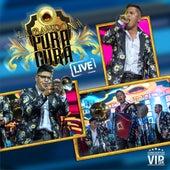 Conciertos Vip 4K: La Bandona Pura Cura (Live) de La Bandona Pura Cura