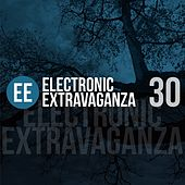 Electronic Extravaganza, Vol. 30 by Various Artists