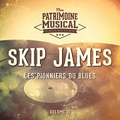 Les pionniers du Blues, Vol. 10 : Skip James de Skip James