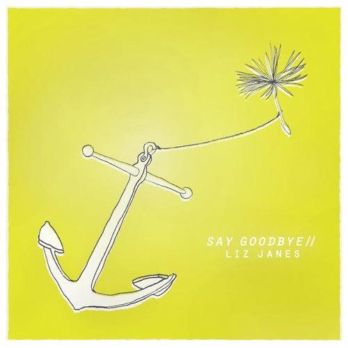 Say Goodbye by Liz Janes