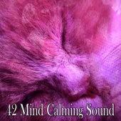 42 Mind Calming Sound by Deep Sleep Music Academy