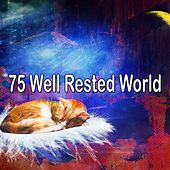 75 Well Rested World de Best Relaxing SPA Music