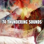 74 Thundering Sounds de White Noise Babies