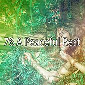 76 A Peaceful Rest von S.P.A