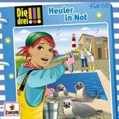 065/Heuler in Not by Die Drei !!!