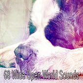 68 Wide Open World Sounds by Sounds Of Nature