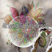 48 Sounds to Bring Harmony by Ambiente