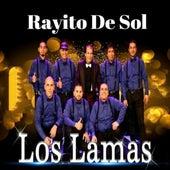 Rayito de Sol de Los Lamas
