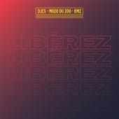 Libérez (feat. Djex & HMZ) de Mozo du Zoo