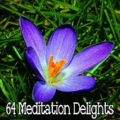64 Meditation Delights de White Noise Therapy (1)