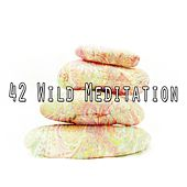 42 Wild Meditation de Deep Sleep Meditation