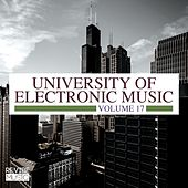 University of Electronic Music, Vol. 17 by Various Artists