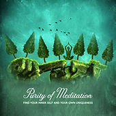 Purity of Meditation - Find Your Inner Self and Your Own Uniqueness de Various Artists