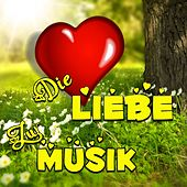 Die Liebe zur Musik von Various Artists