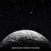 Good Night, Moon in the Dark by Various Artists