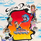 Skyline Drive by Various Artists