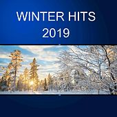 Winter Hits 2019 de Various Artists