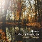 Tristeza de Noviembre: Colección Nostálgica by Various Artists