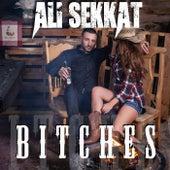 Bitches (feat. Ryan Whyte Maloney & Kylee Skye Lynn) by Ali Sekkat