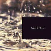 Scent of Rain by Nature Sounds (1)