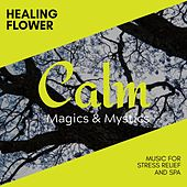 Detoxified Spirit - Music for Soul Healing and Spa de Various Artists