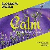 Spiritual Therapy - Music for Healing and Therapeutic Spa de Various Artists