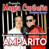 Amparito (feat. Betulio Medina) de Orquesta Magia Caribeña Federico Junior