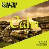 Raise the Positive - Music for Calmness and Wellness de Various Artists