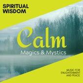 Spiritual Wisdom - Music for Enlightenment and Peace de Various Artists