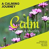 A Calming Journey - Therapeutic Music for Mind and Soul Balance de Various Artists