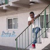 Blues Boy van BushyB