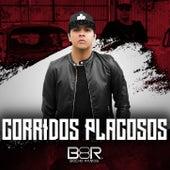 Corridos Placosos by Bocho Ramos