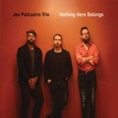 Nothing Here Belongs de Joe Policastro Trio