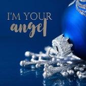 I'm Your Angel (feat. Kathy Deitch & Haviland Stillwell) van Matt Zarley