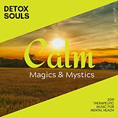Detox Souls - 2019 Therapeutic Music for Mental Health by Various Artists