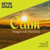 Detox Souls - 2019 Therapeutic Music for Mental Health di Various Artists