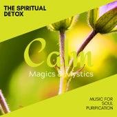 The Spiritual Detox - Music for Soul Purification de Various Artists