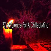 77 Ambience for a Chilled Mind by Exam Study Classical Music Orchestra