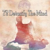 72 Detoxify the Mind di Yoga Music