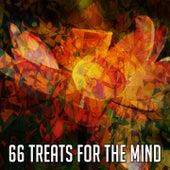 66 Treats for the Mind von Entspannungsmusik