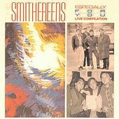 Especially for You (Live Compilation) von The Smithereens