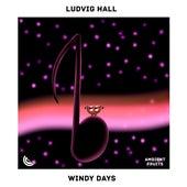 Windy Days de Ludvig Hall