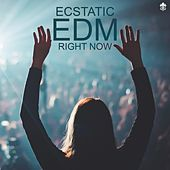 Ecstatic EDM Right Now by Various Artists