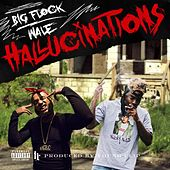Hallucinations (feat. Wale) by Big Flock