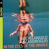 In the Eyes of the Whale by Michelangelo Scandroglio
