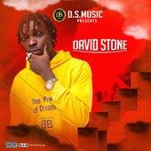 Gon Gon by David Stone
